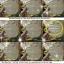 ไส้ตะเกียงน้ำมันอย่างดี 9 เมตร thumbnail 2