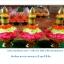 ต้นเทียน พาน (ลาวดอกชบา) thumbnail 1